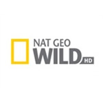 NatGeo Wild HD